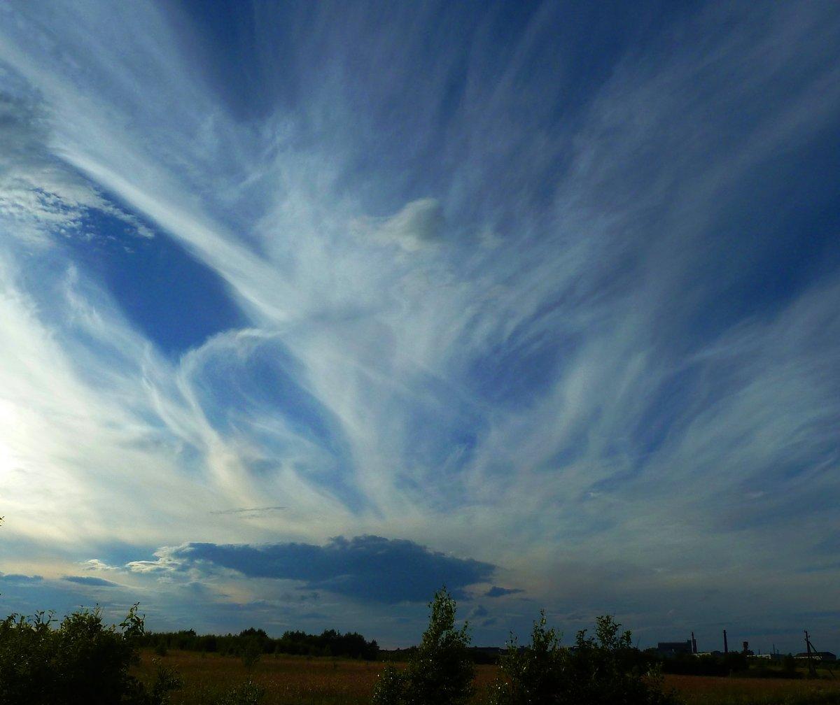картинка ветер в небесах должны обязательно