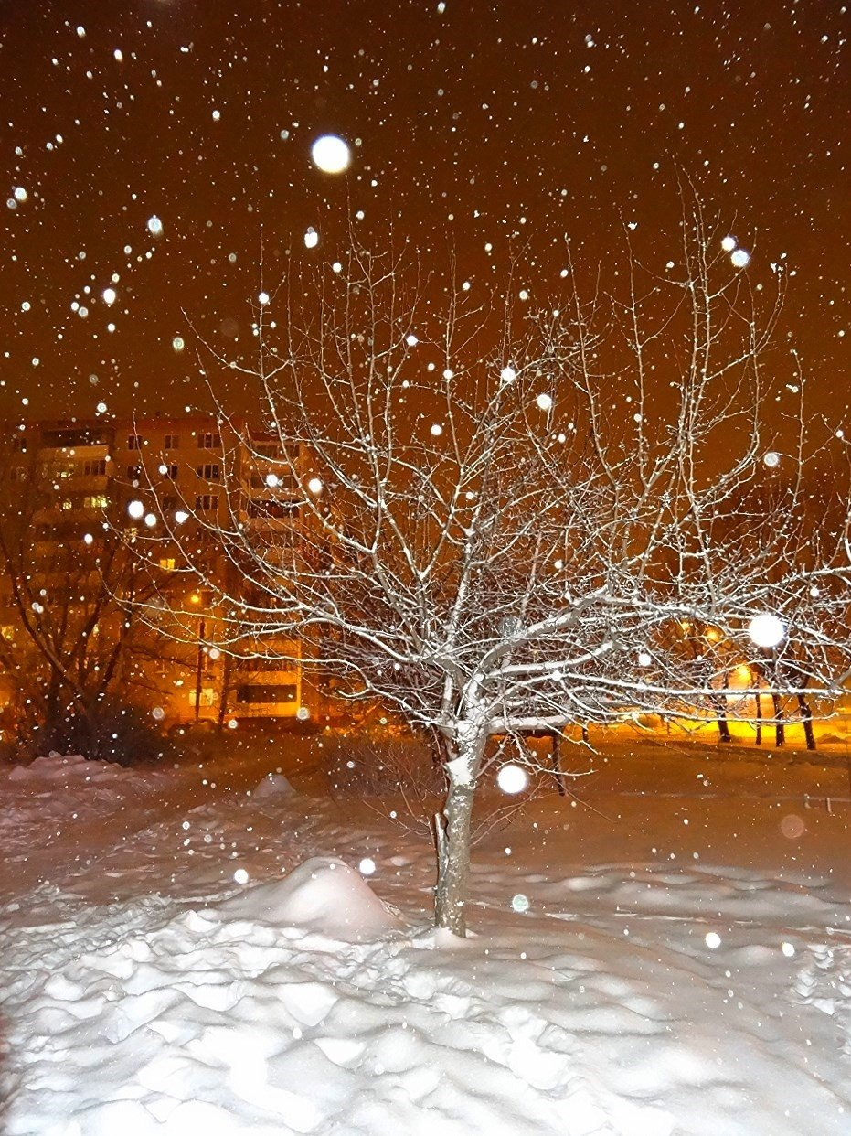 картинка фото снегопад уже