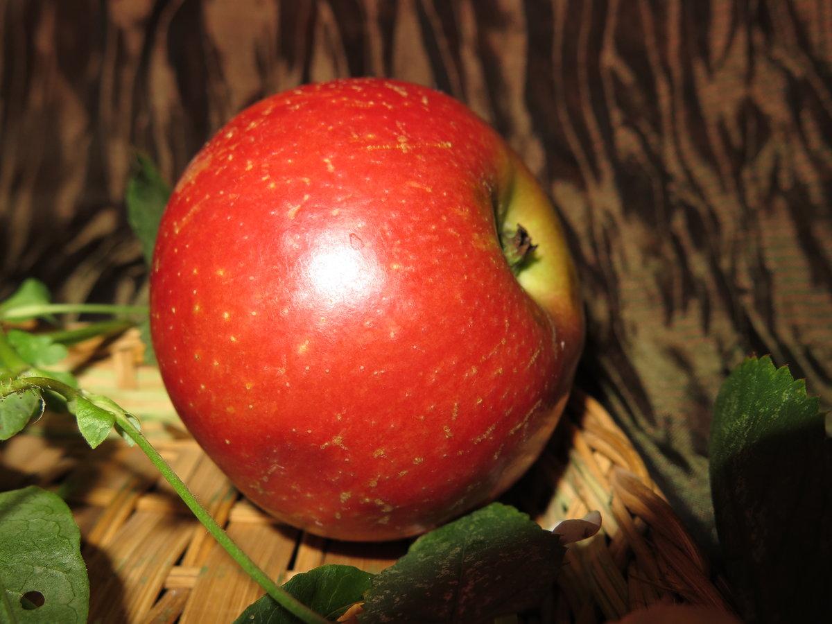 Картинки яблоко наливное