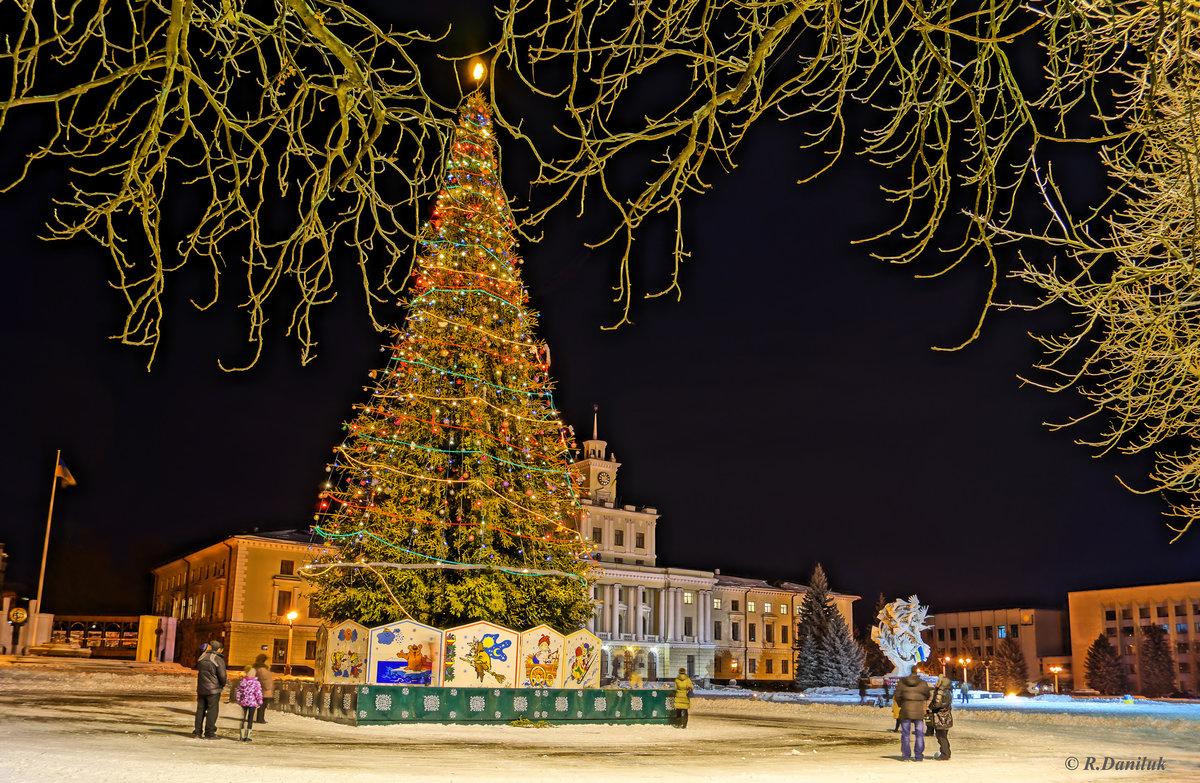 Картинки елка на площади