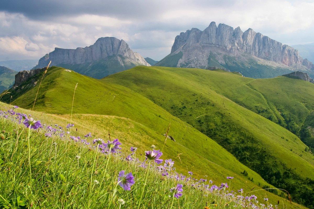Картинки майкоп вид на горы