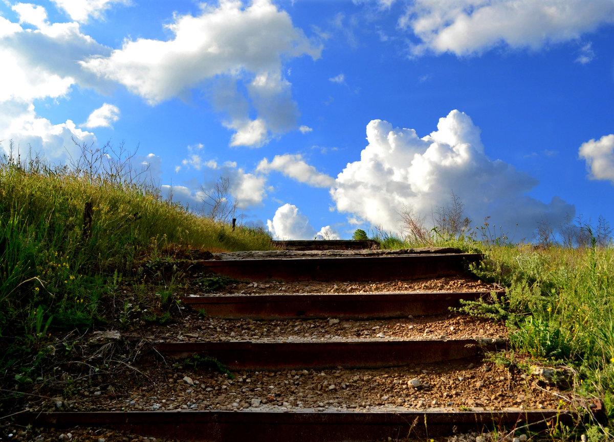 Фото или рисунки лестница и небеса петли