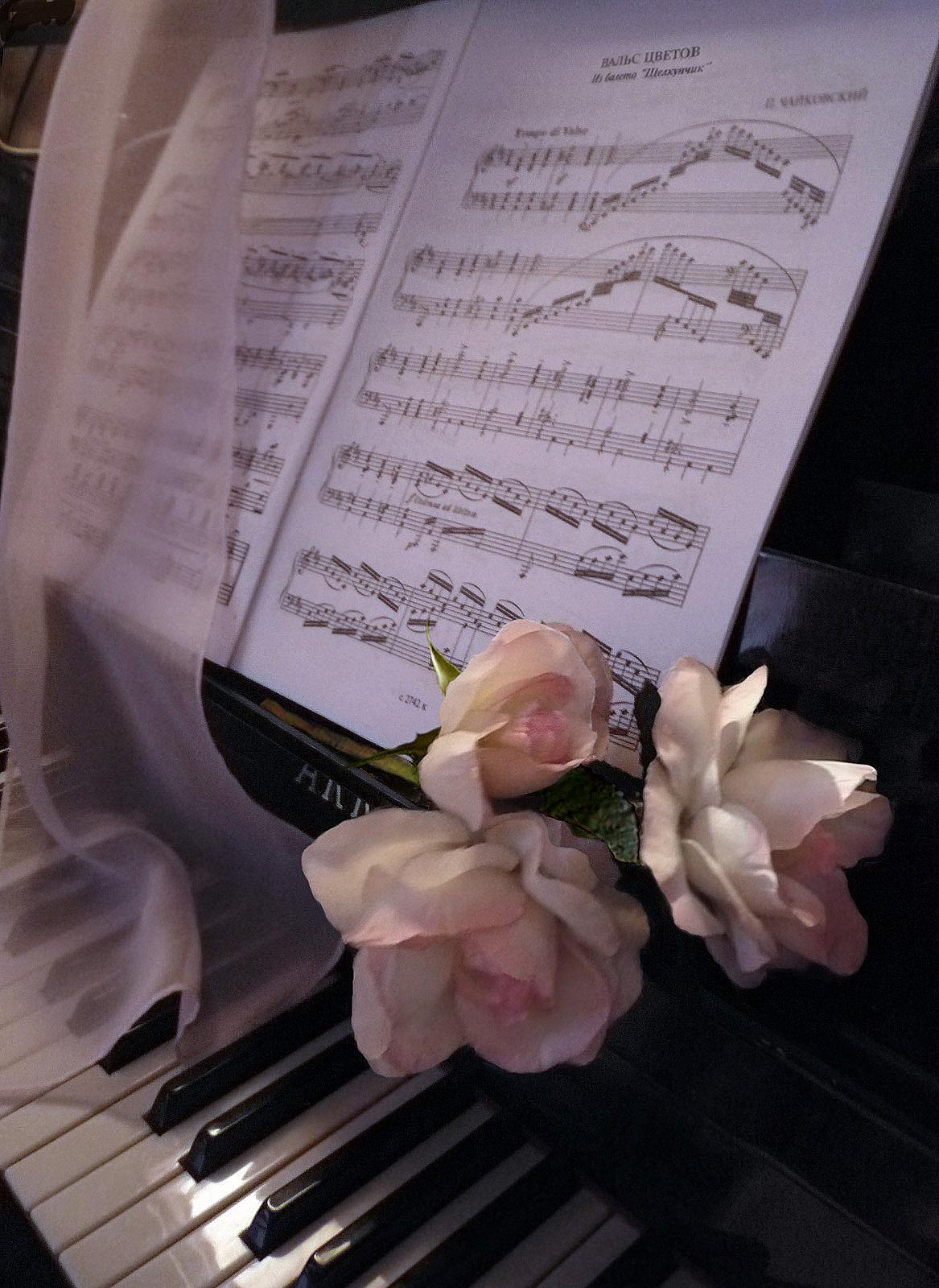 Музыка и цветы стихи