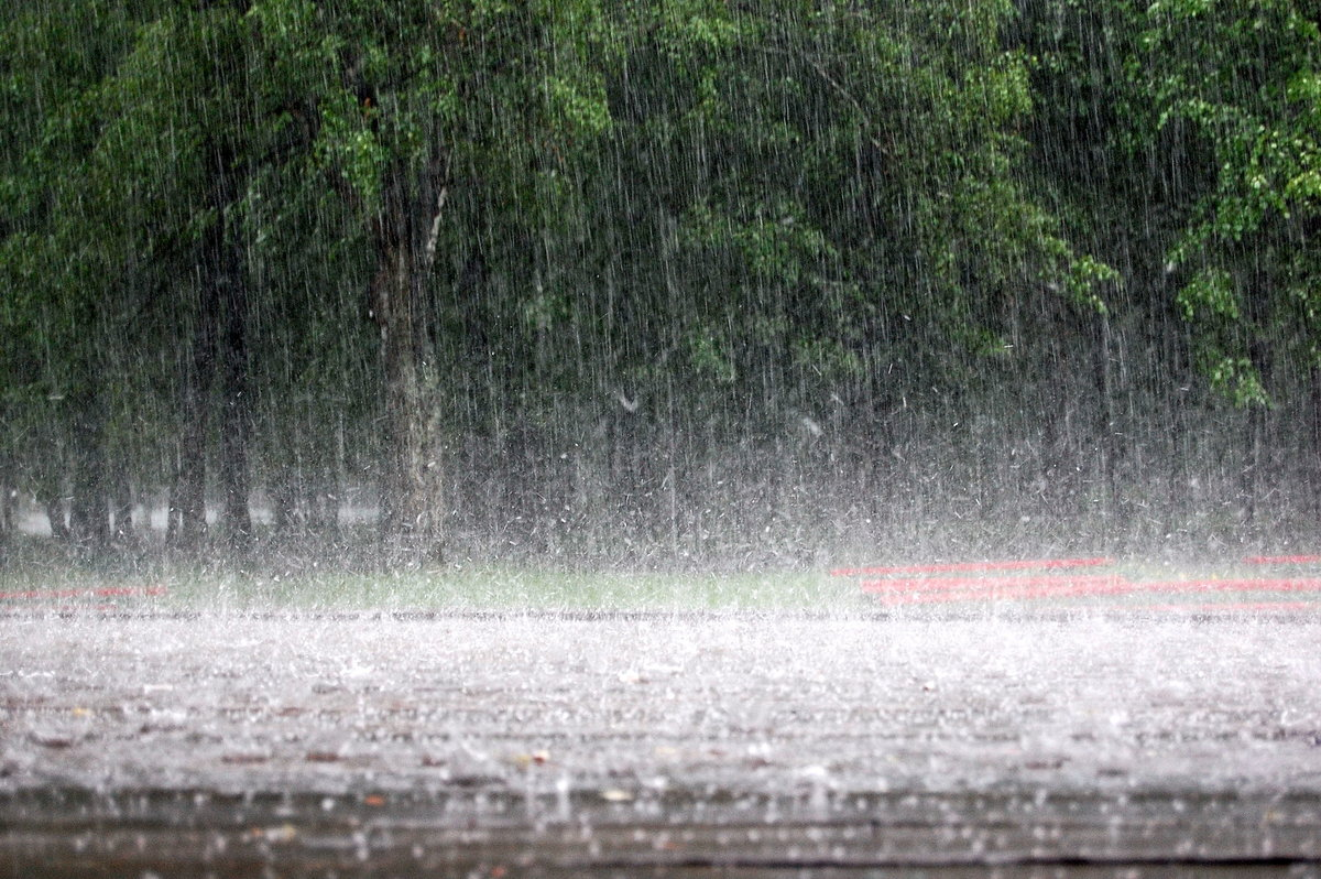 Фото картинки с дождем