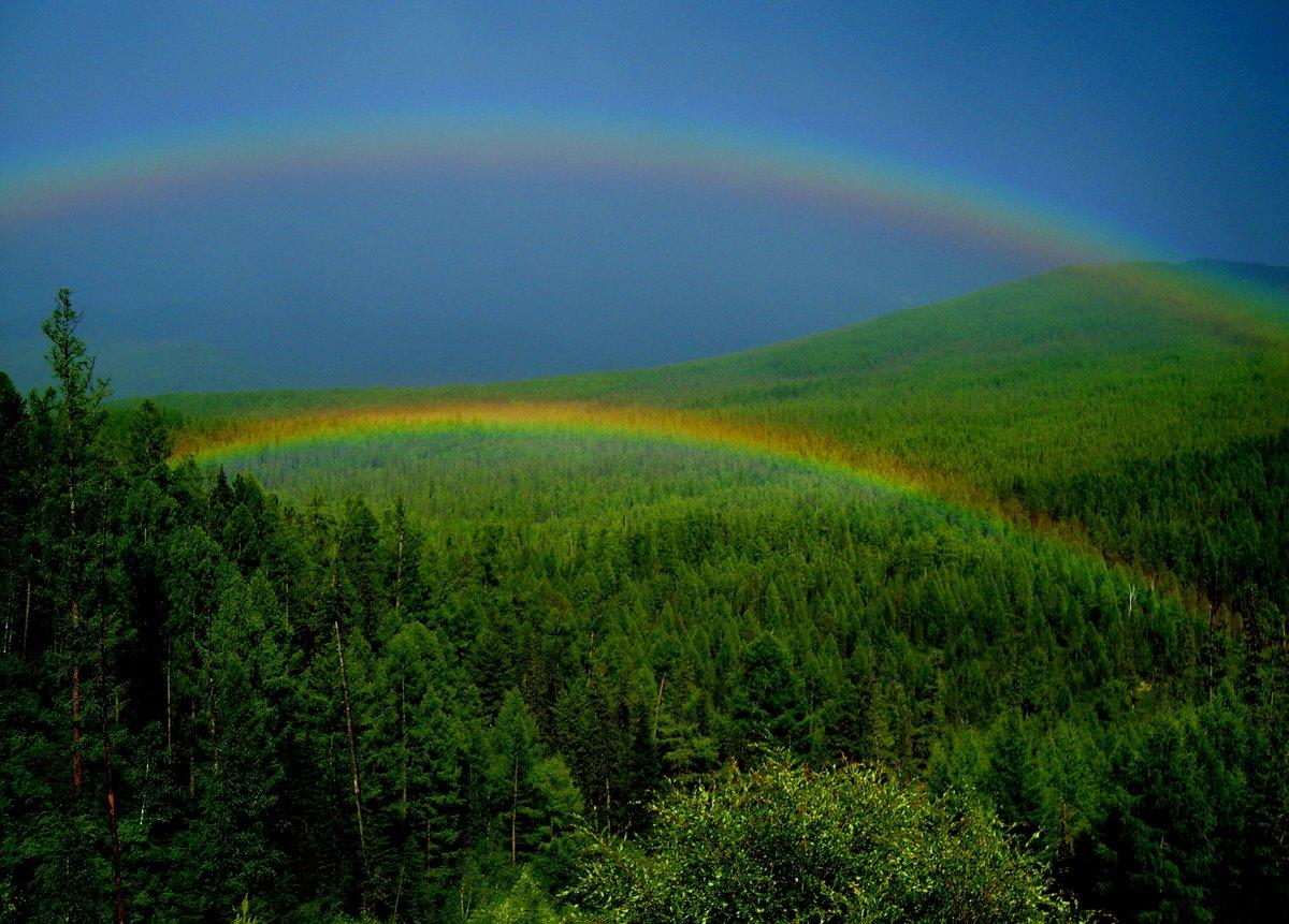 Радуга картинка природа