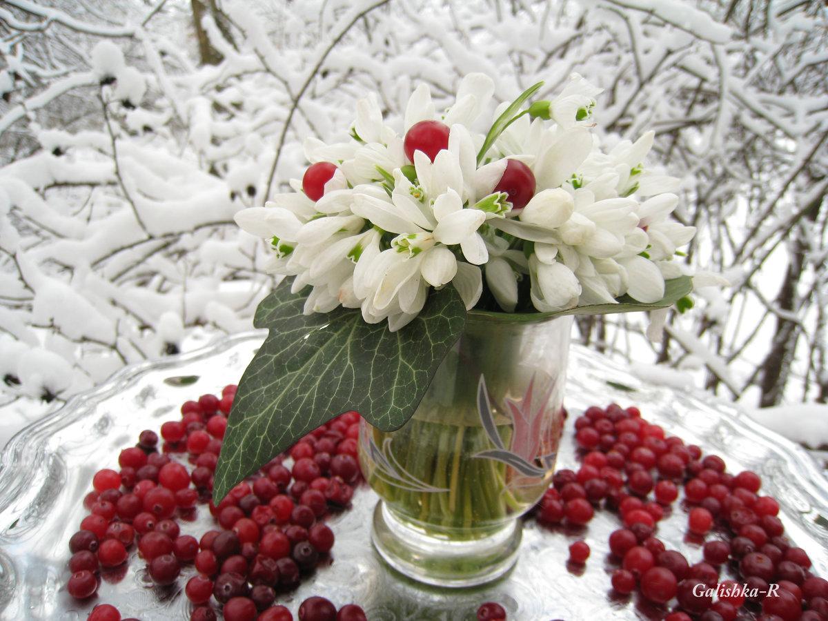 картинки доброе утро снег в апреле ним относится