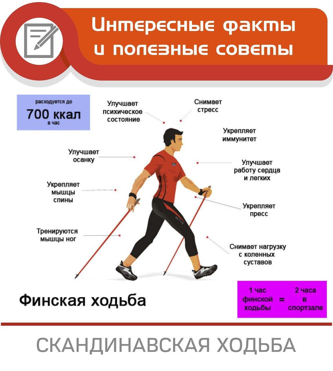 Как Правильно Ходить На Лыжах Чтобы Похудеть. Спорт для сильных, уверенных и стройных — лыжи для похудения