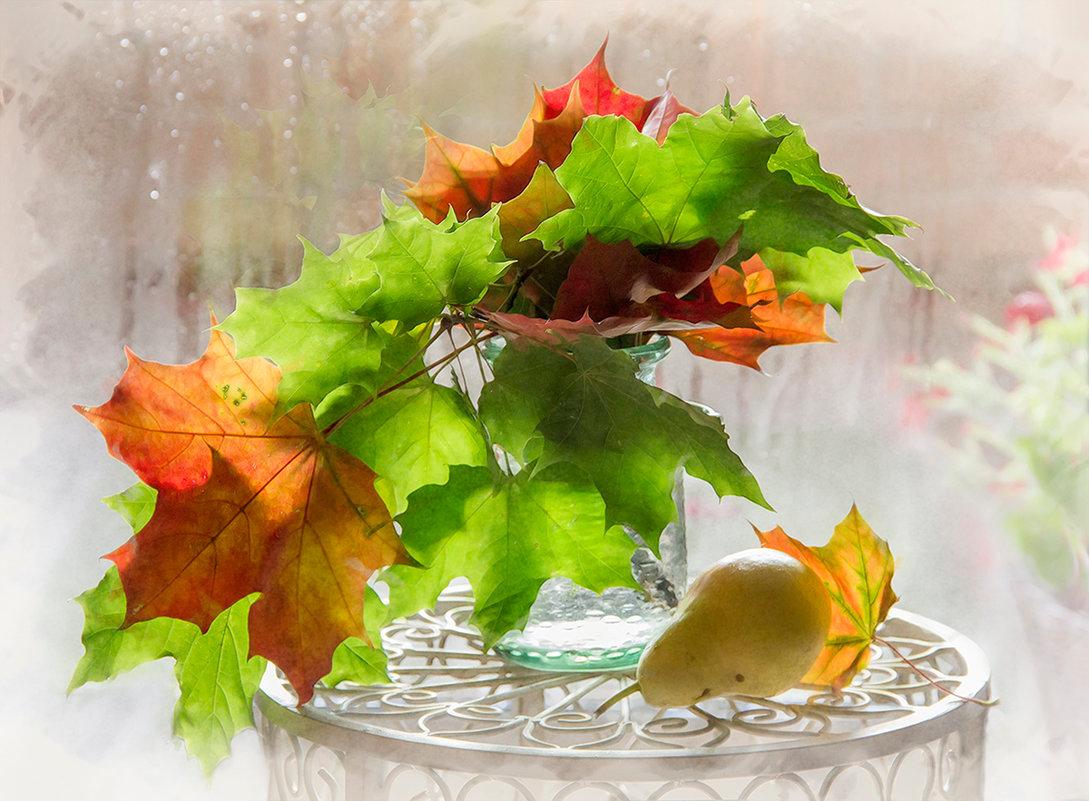 Картинка анимация про осень