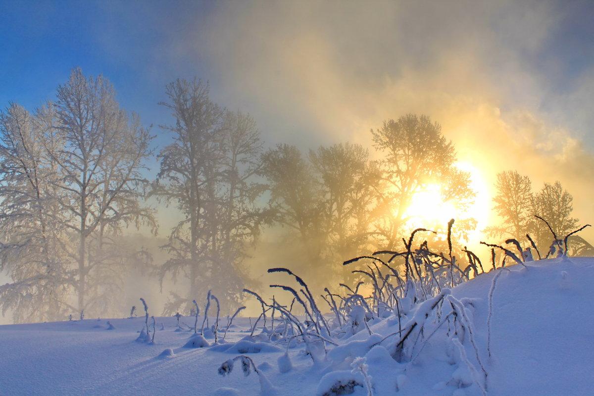 Мужчине, картинки оптимистам в снежное февральское утро
