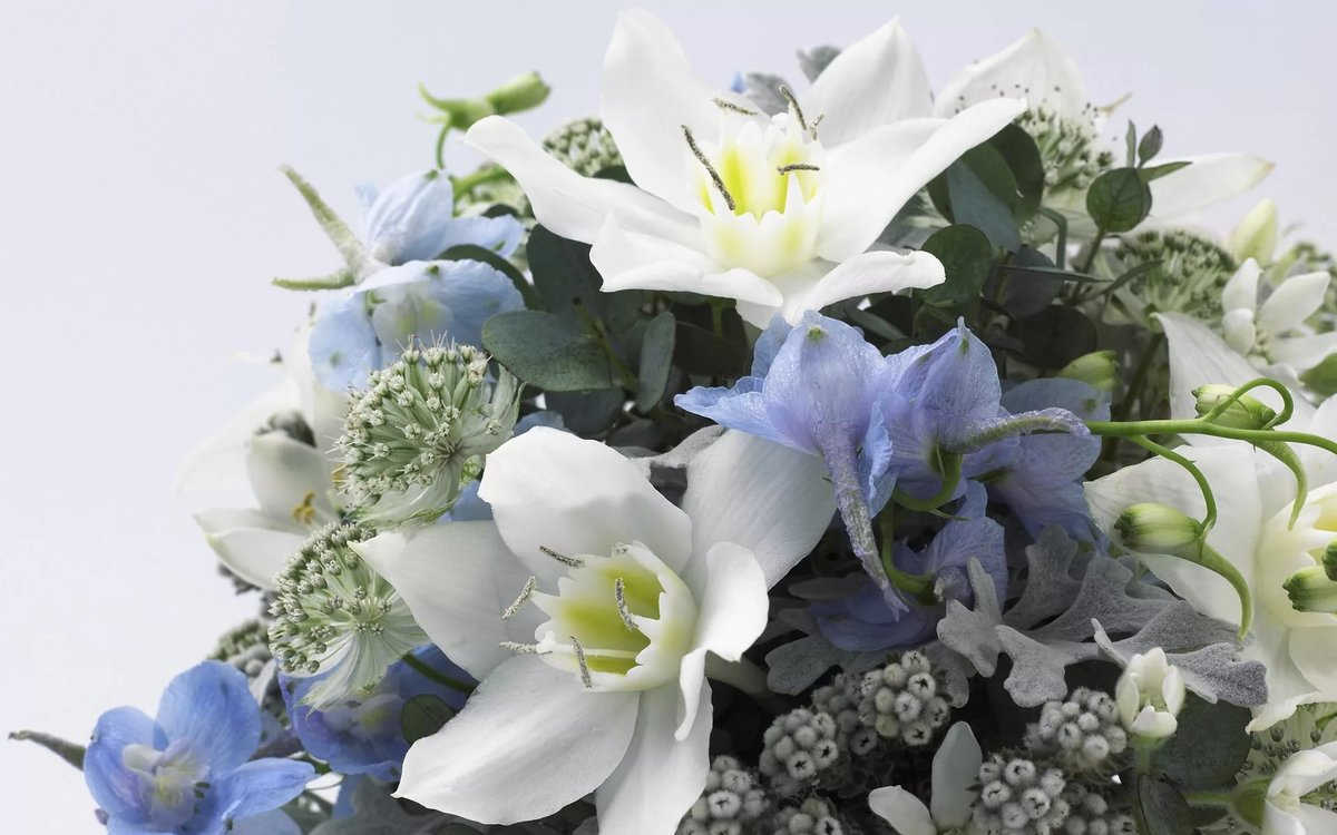 Открытка онлайн цветы, слез