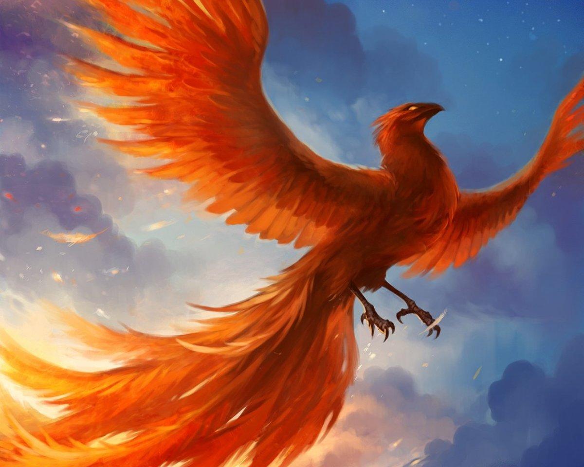 Per se phoenix dating