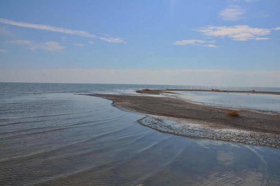 Рыбалка озеро кулундинское алтайский край