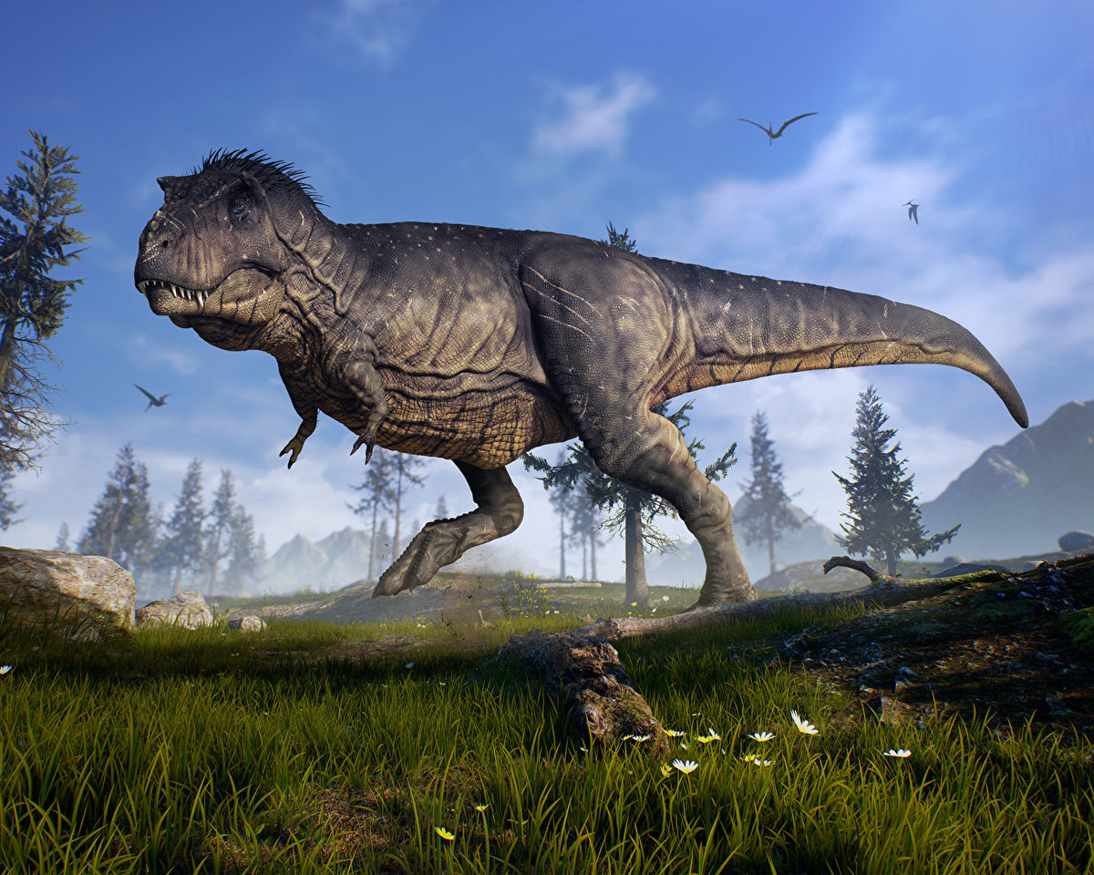 таблички фото тиранозавра настоящего фото неправильного