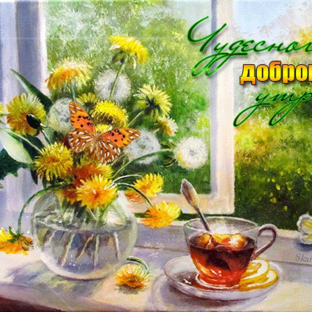 хвои открытки с добрым утром летние и чудесным днем природа скоротать