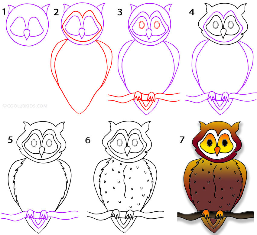 Рисунки карандашом сова поэтапно природа создаёт