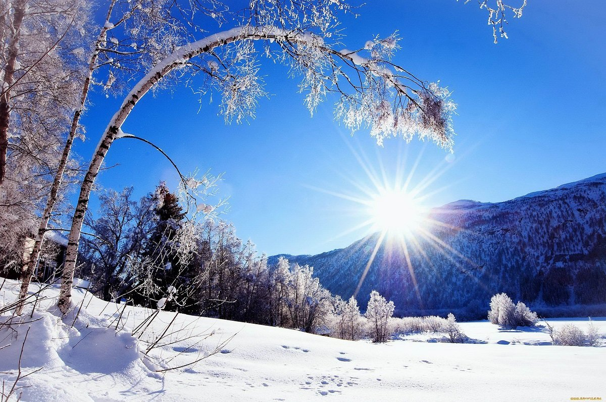 Картинки, зима фото и открытки