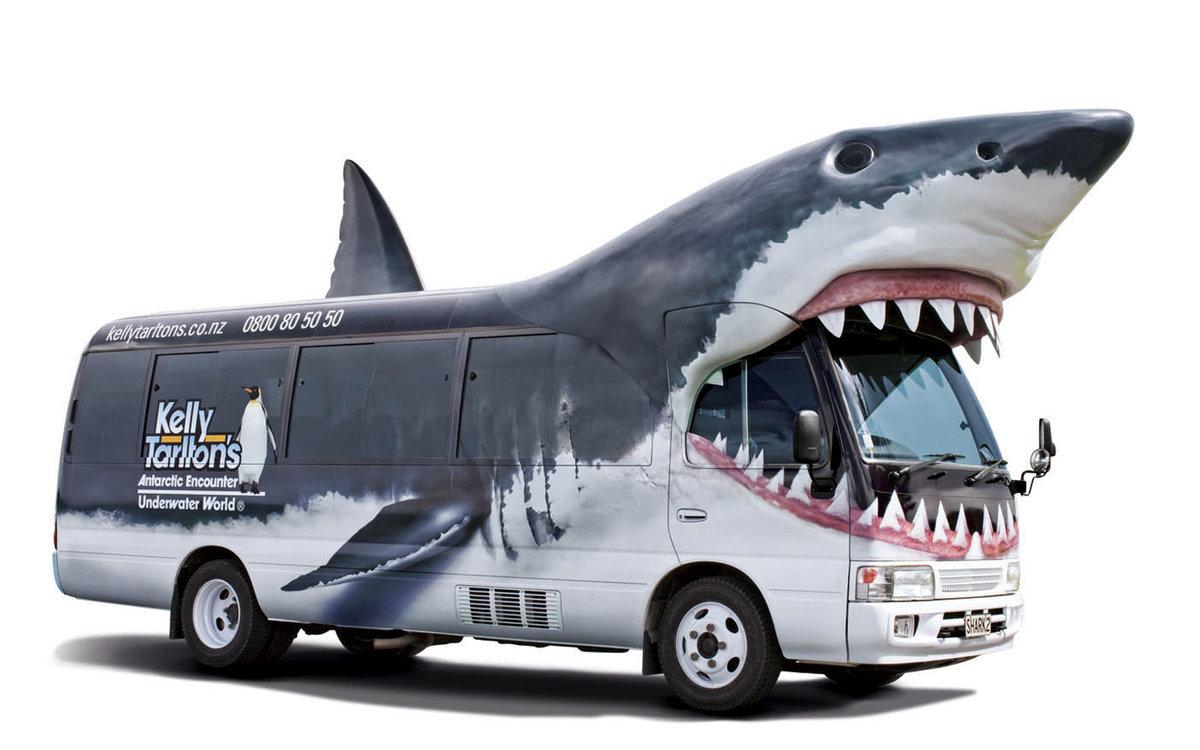 модель автобус с картинками животных внутри знаменито только