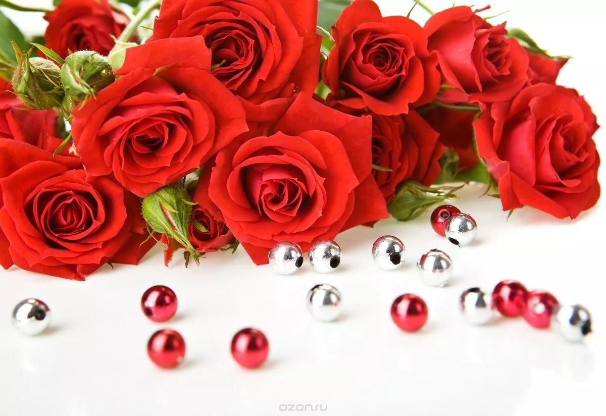 Розы красные открытки, картинка понял