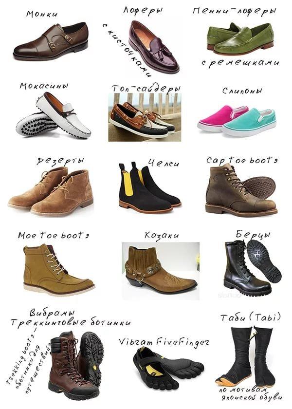 виды женских туфлей названия с картинками вам