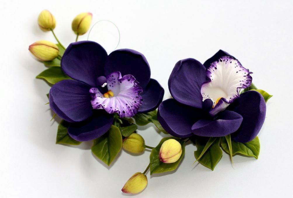цветы из фоамирана орхидеи фото ценителей эстетических