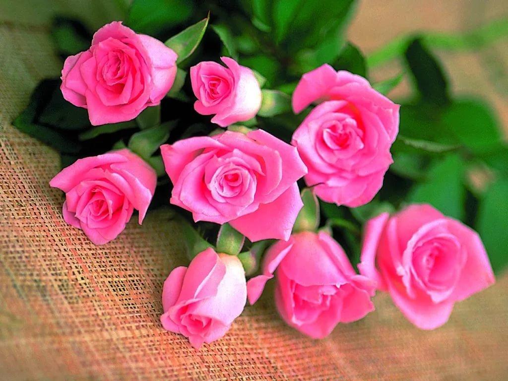 Розы подруге открытка