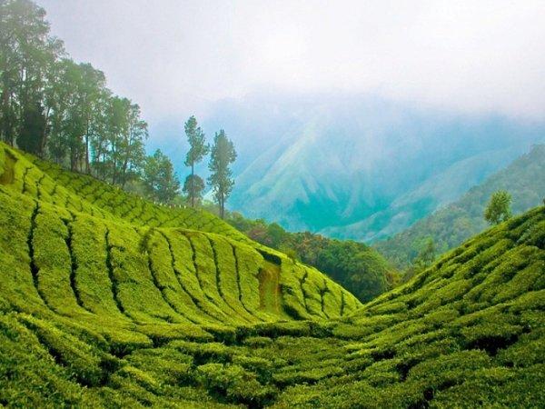 природа в индии - горы и равнины