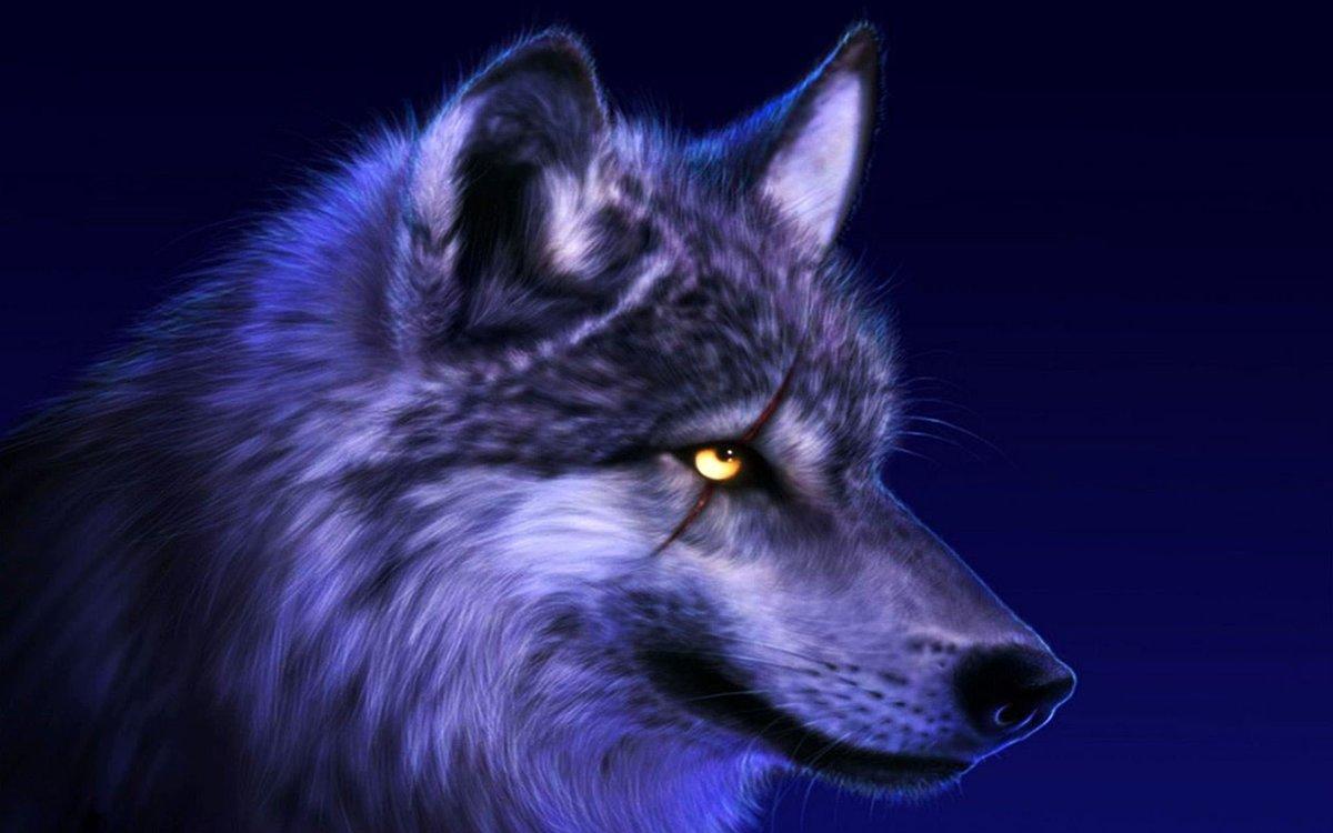 Медовым спасом, крутые картинки про волков