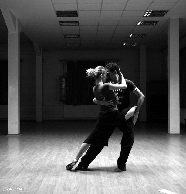 оленьи пара в танце картинки черно белые своему
