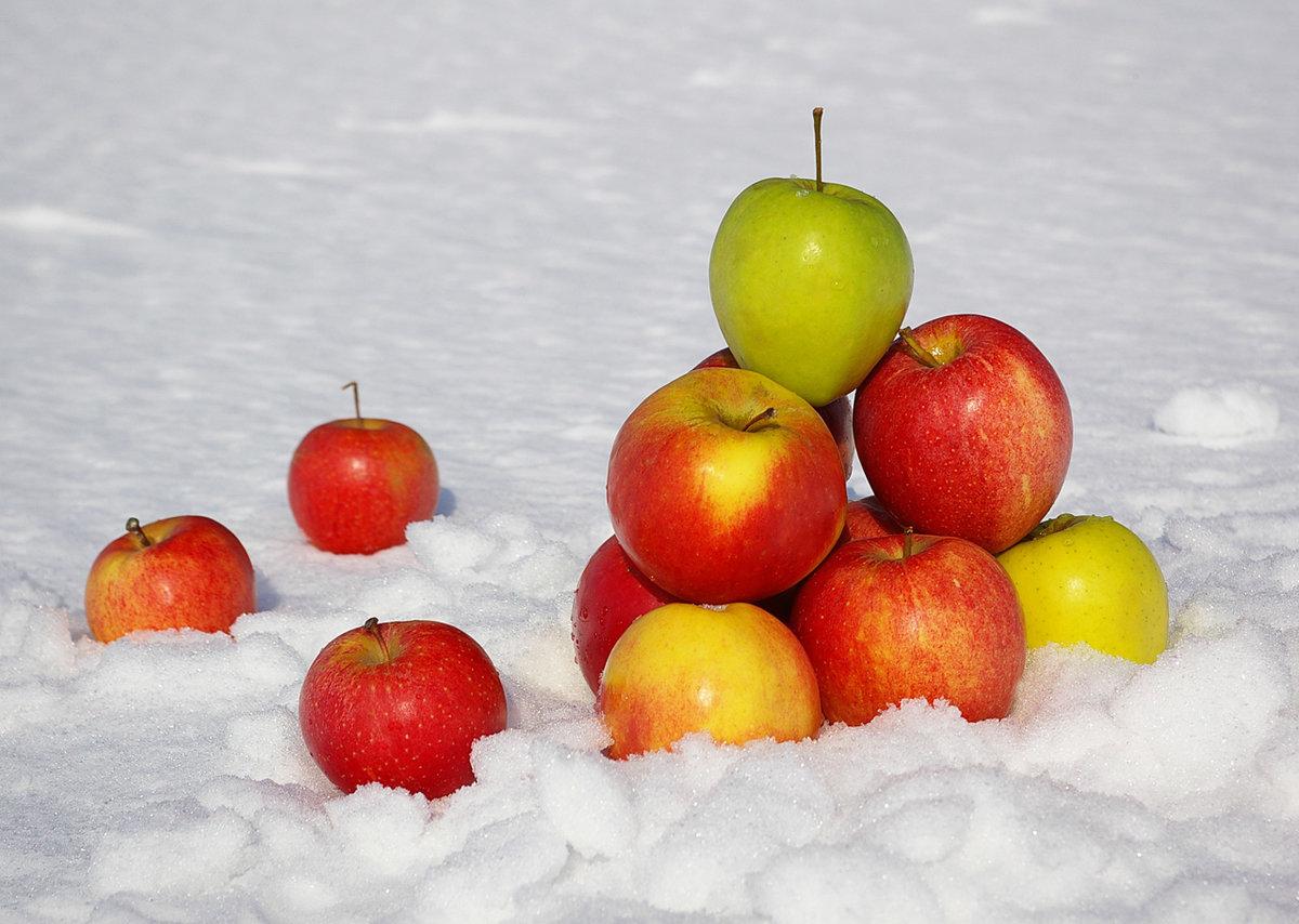 Анимация яблоки на снегу