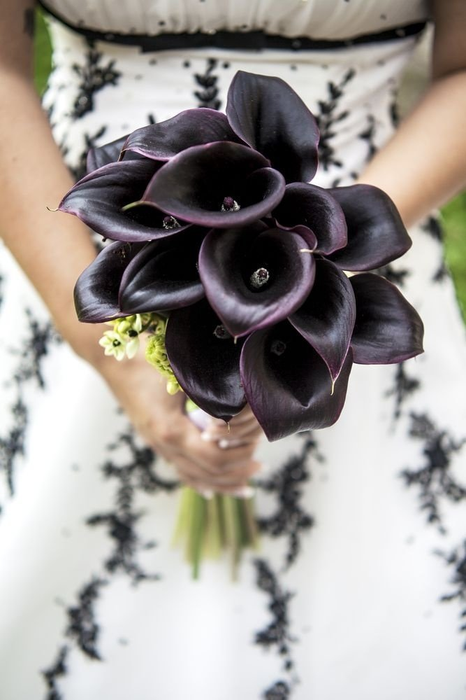 Черные каллы букет