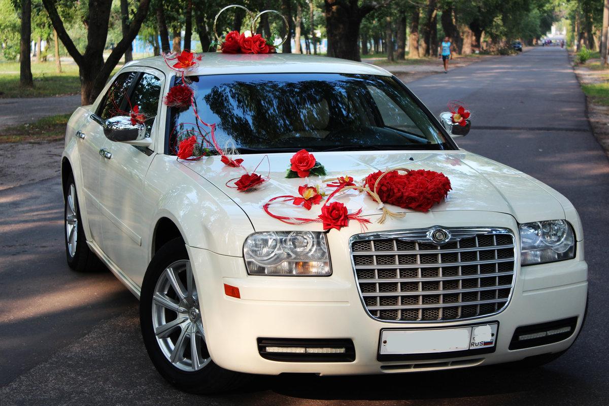 минздрава красивые авто на свадьбу фото поисках еды голодные