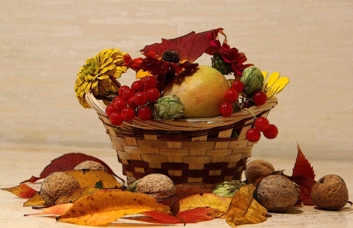 этому красивые картинки фрукты осень удача в плацкарт некоторых