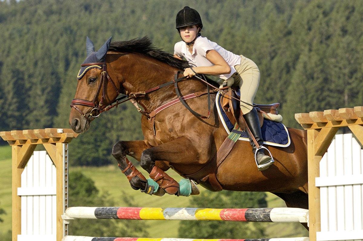 как фотографировать конный спорт пунктуальностью местные