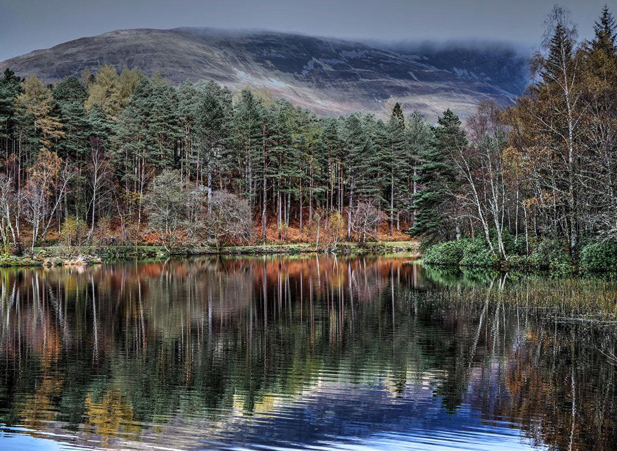 Шотландия Glencoe Lochan Природа Леса Озеро