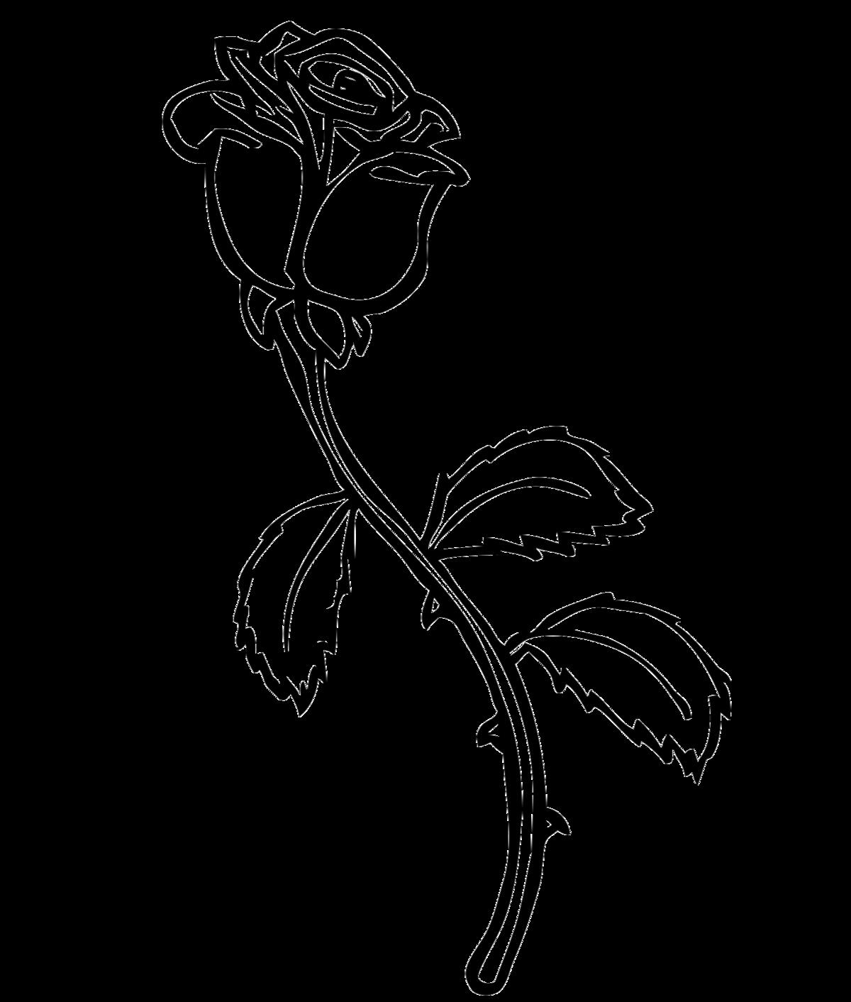 Роза рисунок для детей
