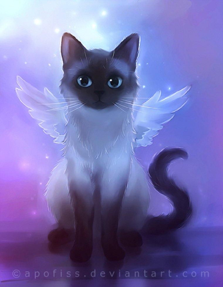 Открытки, картинки аниме кошки животные