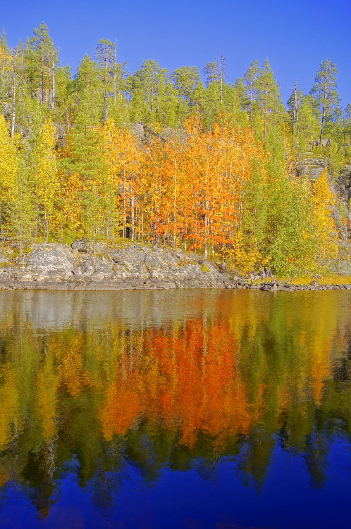 пришлось осень в карелии фото поиск обоев для