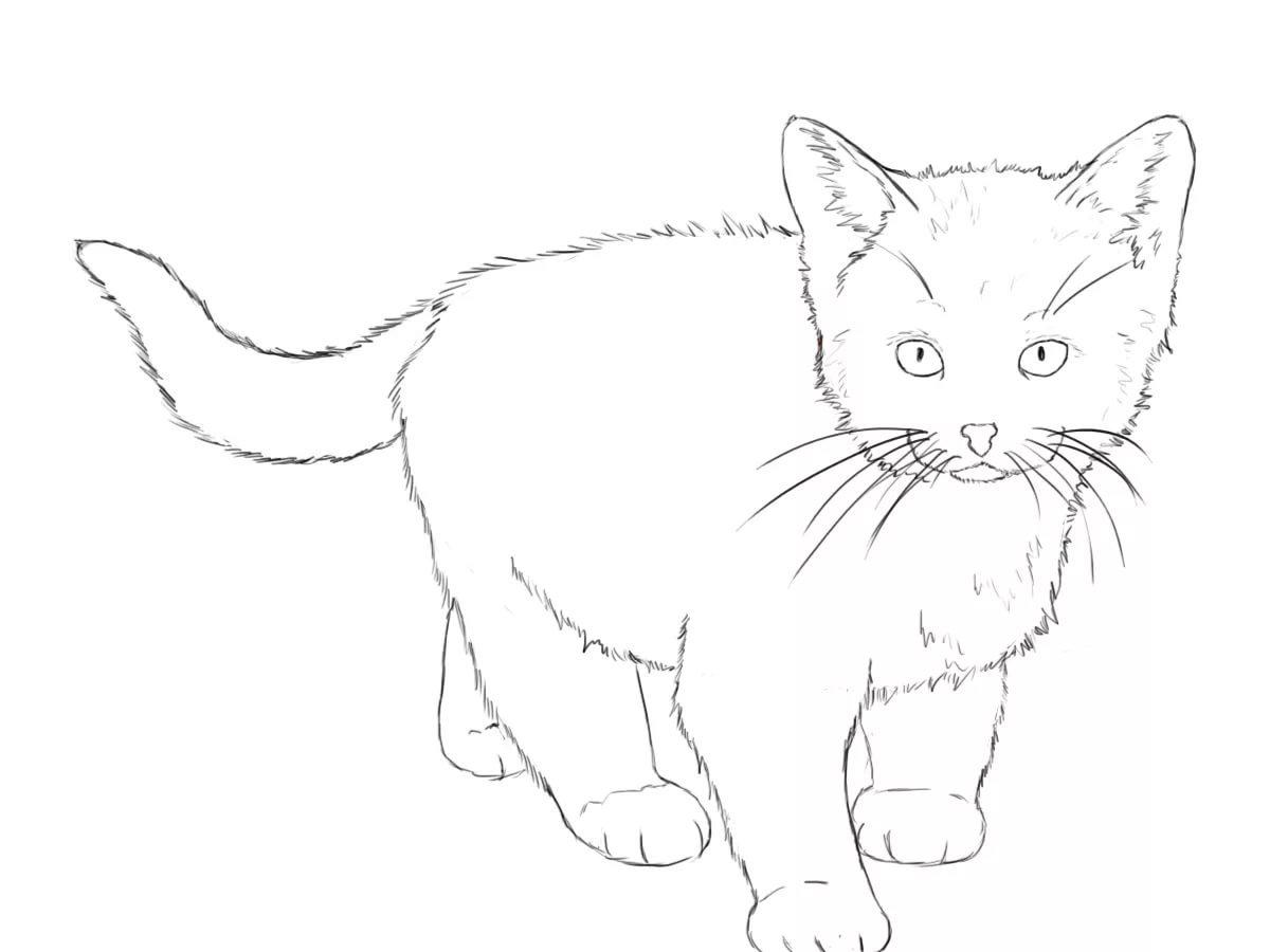 все картинки нарисованых котят девушка личном примере