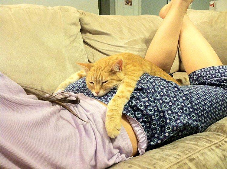 Прикольная картинка спящего, любимая картинки надписями