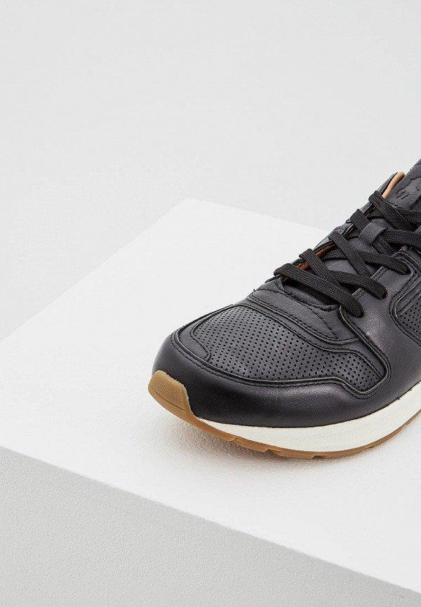 16a4847f2c2a Кроссовки Polo Ralph Lauren в Находке. Ботинки (Мужская обувь) - купить на  Сайт