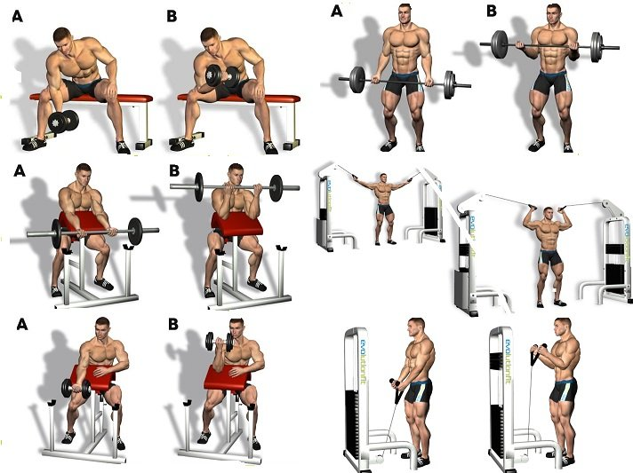 Arm Workouts Archives Page 2 Of 6 Gym Workout Chart