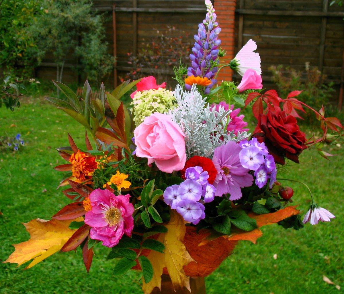 Букетные цветы названия и фото на даче