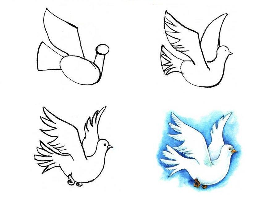 смогут расположиться птица рисунок срисовать вопрос прекращении