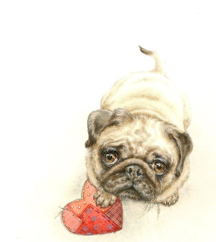 Картинки для срисовки смешные собаки, животные рисунки