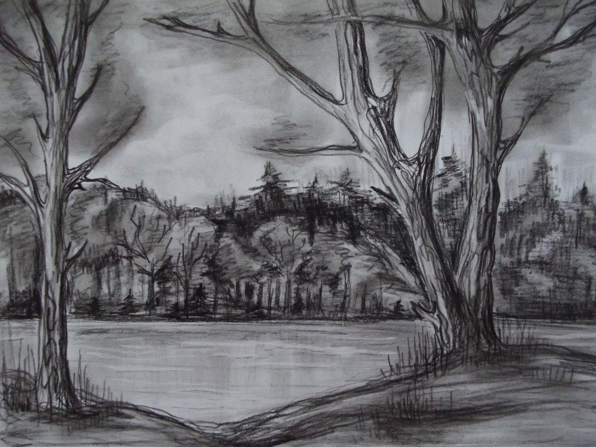 Картинки пейзаж карандашом для начинающих