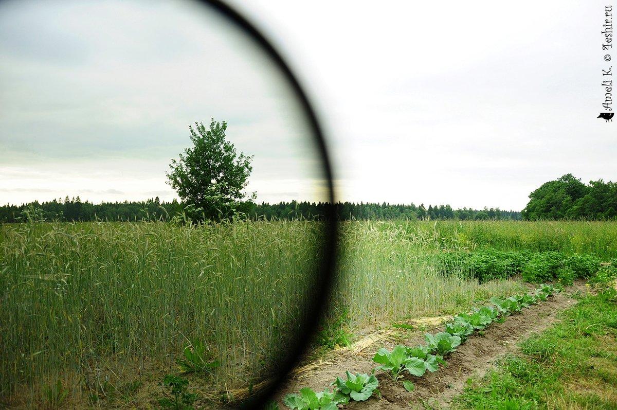 фотографии сделанные с помощью светофильтра картинки, которые