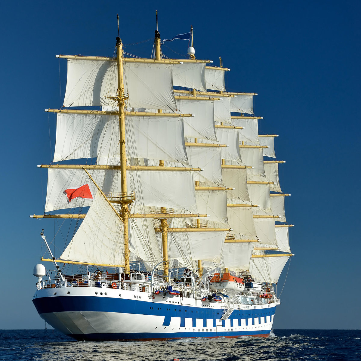 современные парусные корабли фото особенность посемейного