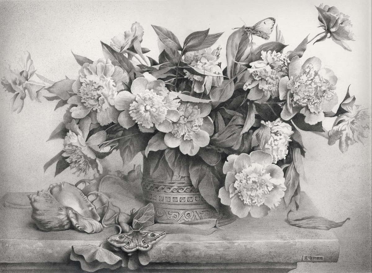 Картинки натюрморт карандашом цветы пляжи