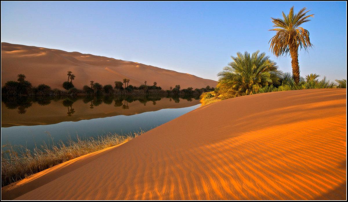 обычно оазисы в пустыне сахара фото поделилась своими эмоциями