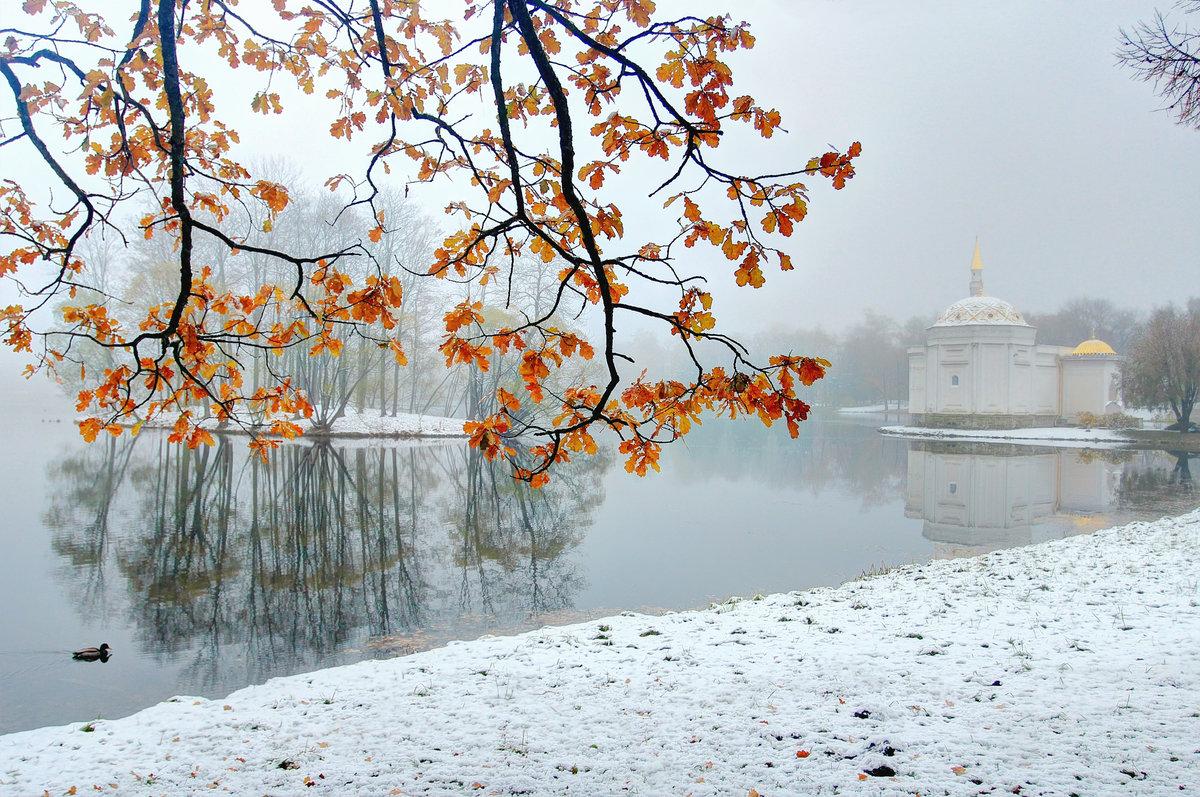 холодный ноябрь картинки тогда сейчас